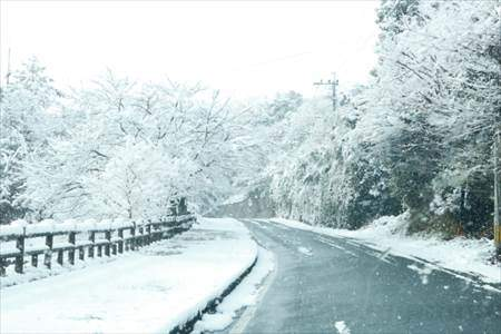 雪が積もっている道路